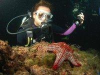 Descubriendo la fauna marina de noche