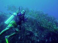 Descubre la maravillosa vida marina de Acapulco