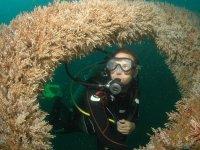 Te espera un mundo nuevo debajo del mar