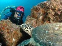 Haciendo nuevos amigos bajo el mar