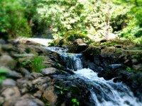 Walk in a 100% natural environment