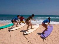 Programas de surf