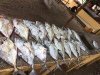 pescas