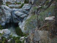 La cascada de la biosfera