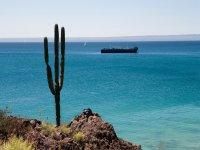 Baja Sur