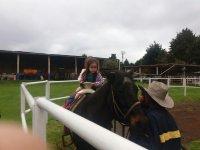 Interactuando con los caballos