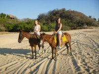 Come and enjoy with your friends the horses