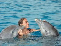 nado con delfines