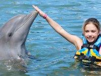 conoce delfines