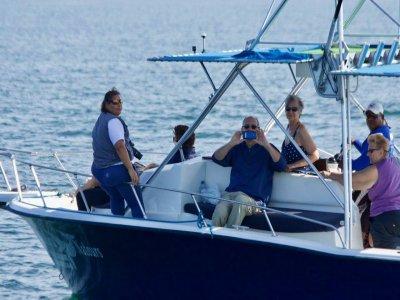 Vallarta Natours Paseos en Barco