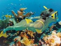 El fondo marino con snorkel