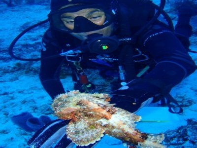 Dive with Cristina Buceo