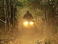 Entra en la selva con tu cuatrimoto