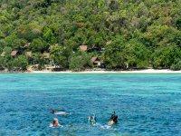 Haz snorkel en la orilla