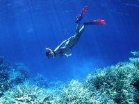 Snorkel en las mejores zonas