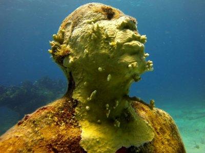 Scuba Cancún Snorkel