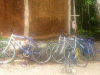 bicis para la familia
