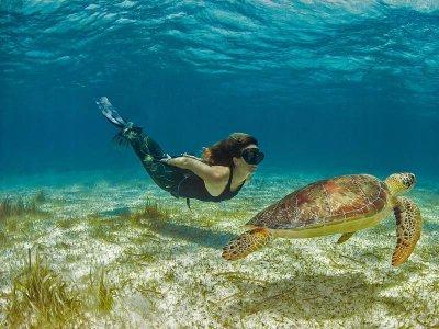 Mahahual Dive Centre Snorkel