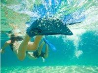 Explorando el mar con snorkel