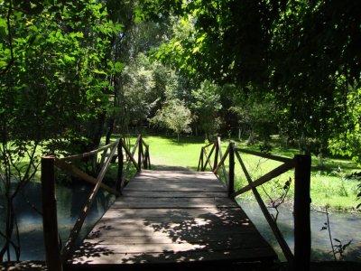 Bosque San Miguel de Regla