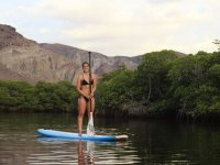 Explore each place with the Paddle Surf