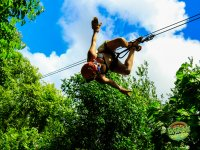 Extreme adventure in our zip lines