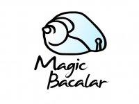 Magic Bacalar Caminata