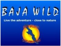 Baja Wild Motos de Agua
