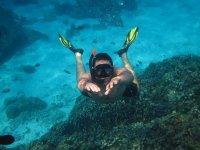 snorkel in reefs