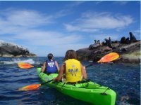 Kayak en el mar