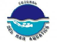 DelMar Aquatics