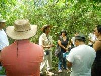 guide explaining environment