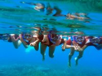 all corals snorkeling with friends