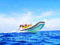 Walk with friends boat tours