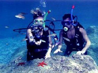 Sea Scuba Buceo