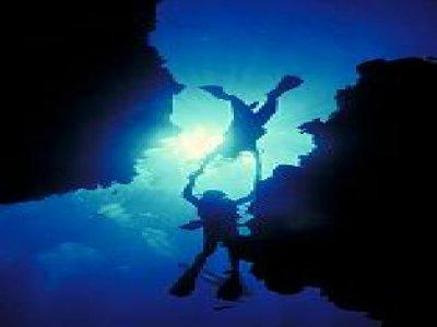 Sea Scuba Snorkel