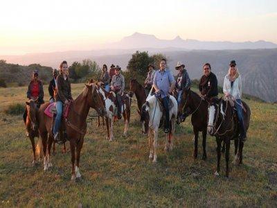 Baja Horses