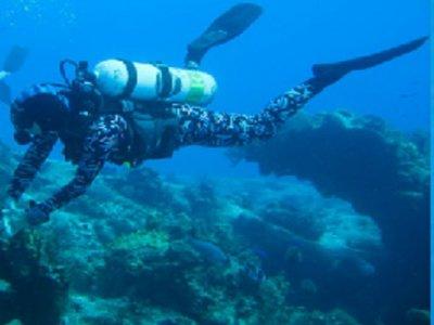 Tony Perez Custom Diving & Instruction