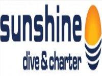 Sunshine Dive Charter Buceo