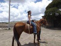 Paseos a caballo en el campo