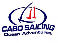 Cabo Sailing Whale Watching