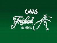 Cavas Freixenet de México