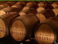 Queretaro wines