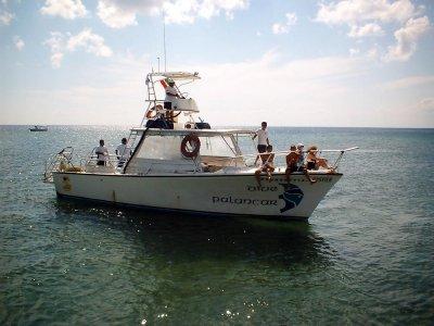 Dive Palancar Snorkel