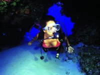Come to live the magic of diving in Puerto Vallarta