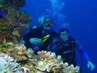 Diving experience in Puerto Vallarta