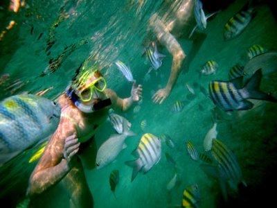 Maya Palms Snorkel