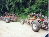 Adventure in a Buggy through the Sierra Madre