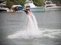 Como delfin