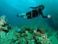 expediciones en arrecifes